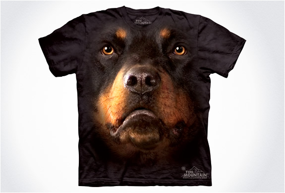 Dog - Best T-shirts Design