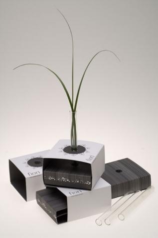 A paper vase - Fiori Flowers