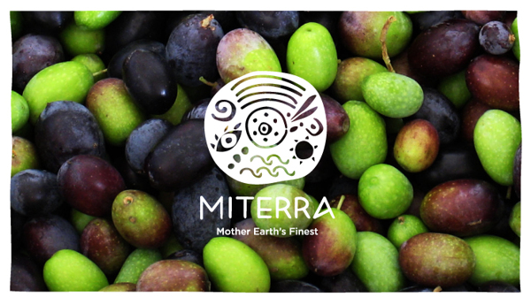 Miterra - What the logo looks like
