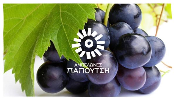 Papoutsi Vineyards